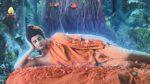 พระพุทธเจ้ามหาศาสดาโลก ตอนที่ 54 พระพุทธเจ้ามหาศาสดาโลก EP.54
